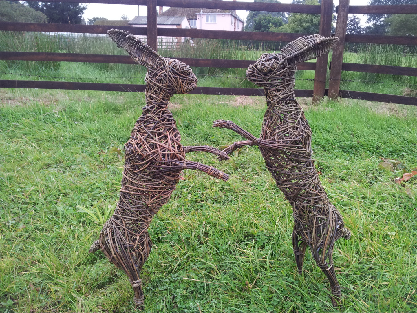 Willow Boxing Hares