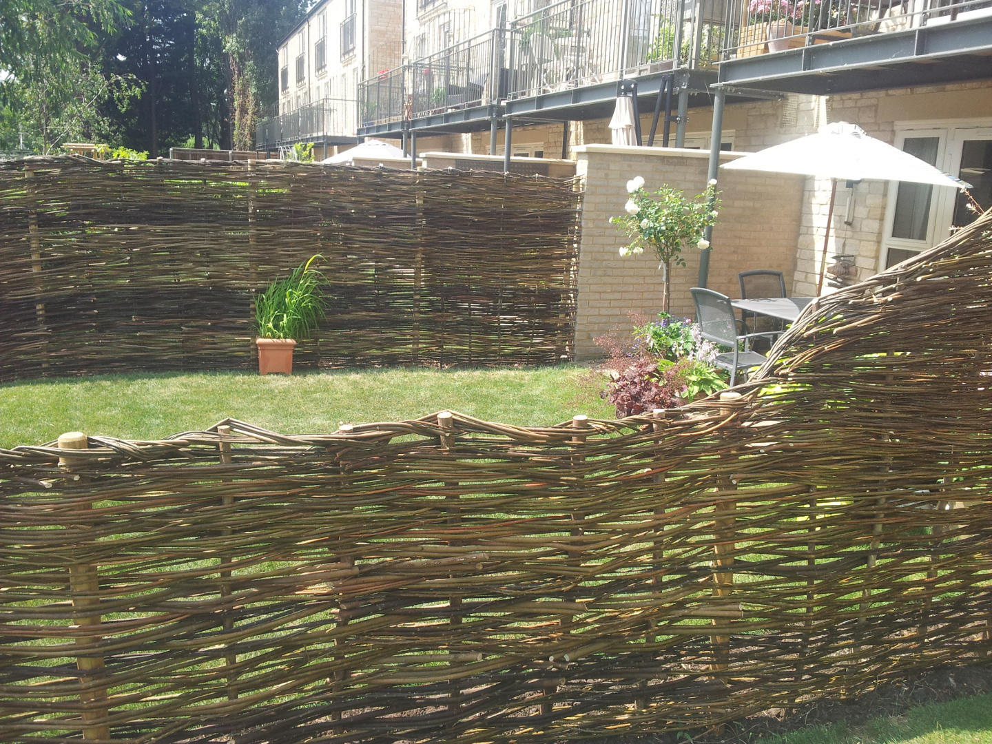 insitu willow weaves