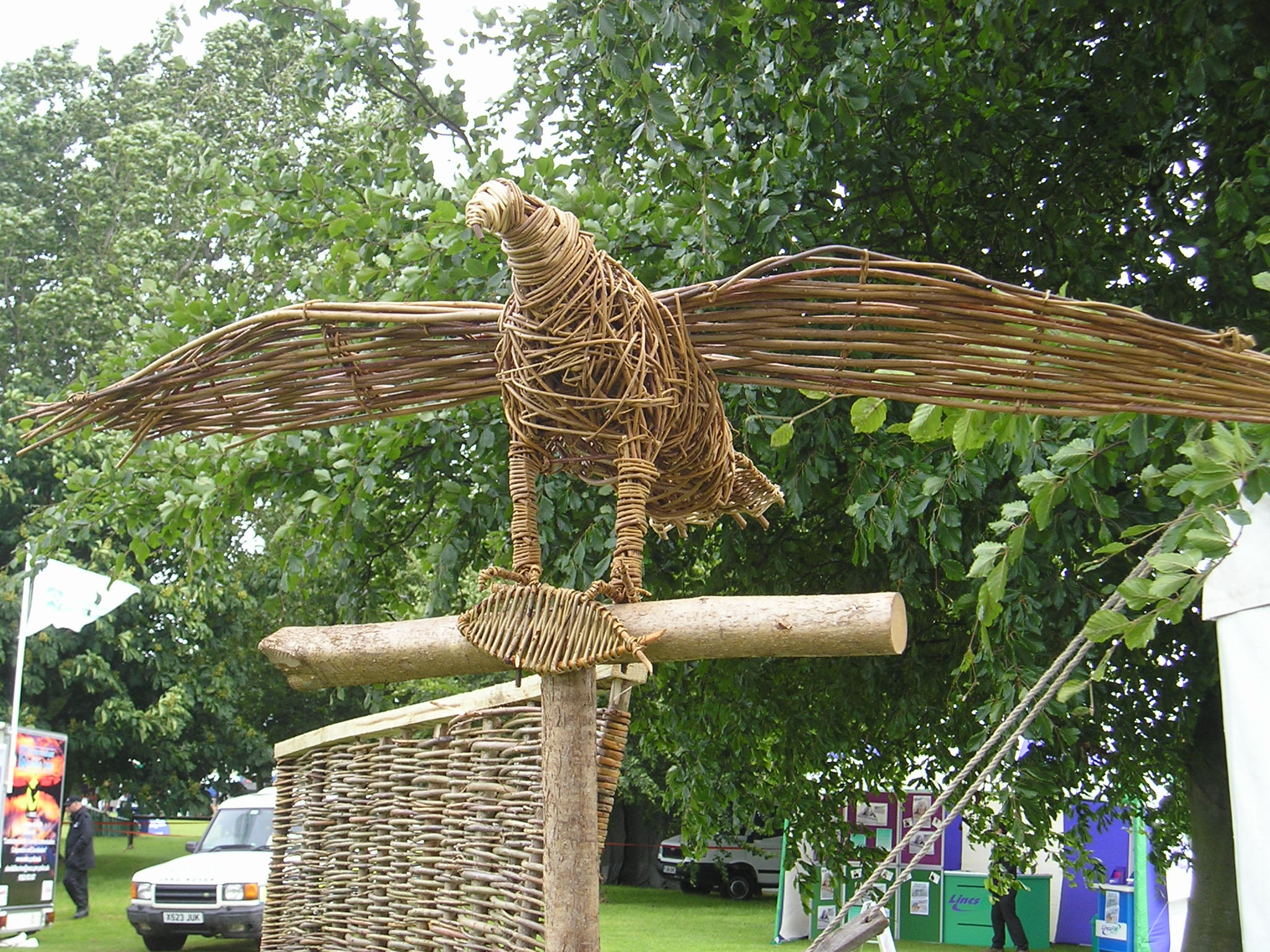 Willow Osprey