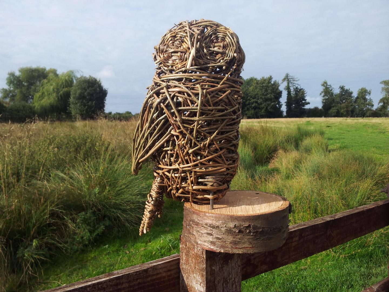 Willow Tawny Owl