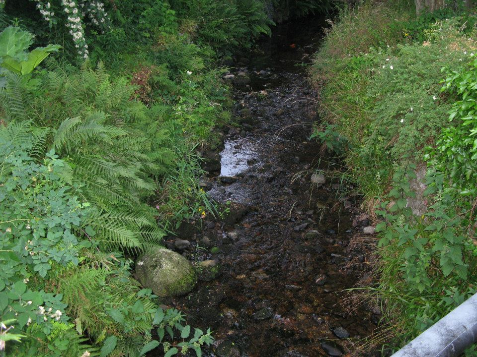 The burn running through Grovewood House's gardens