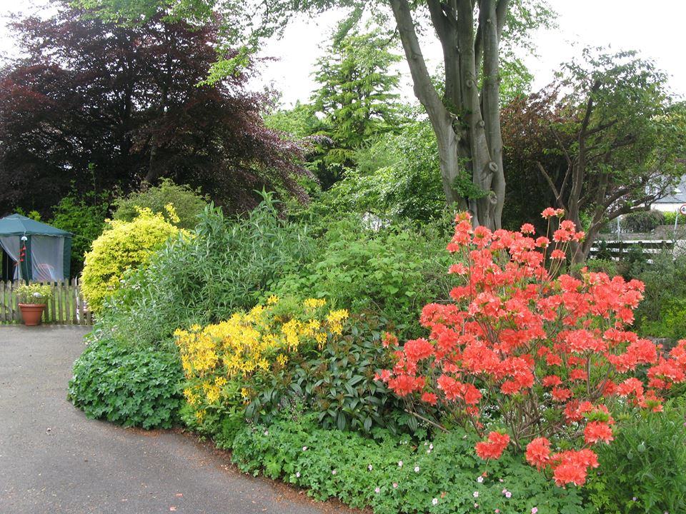 The colourful gardens of Grovewood House