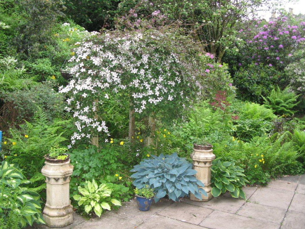 The attractive garden at Grovewood House Guest House in the pretty village of Kirkbean, Scotland