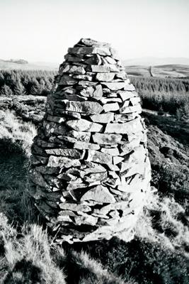The Pine Cone, Craigadam Woodland, Crocketford