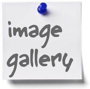 Images of Crocketford events and the local area