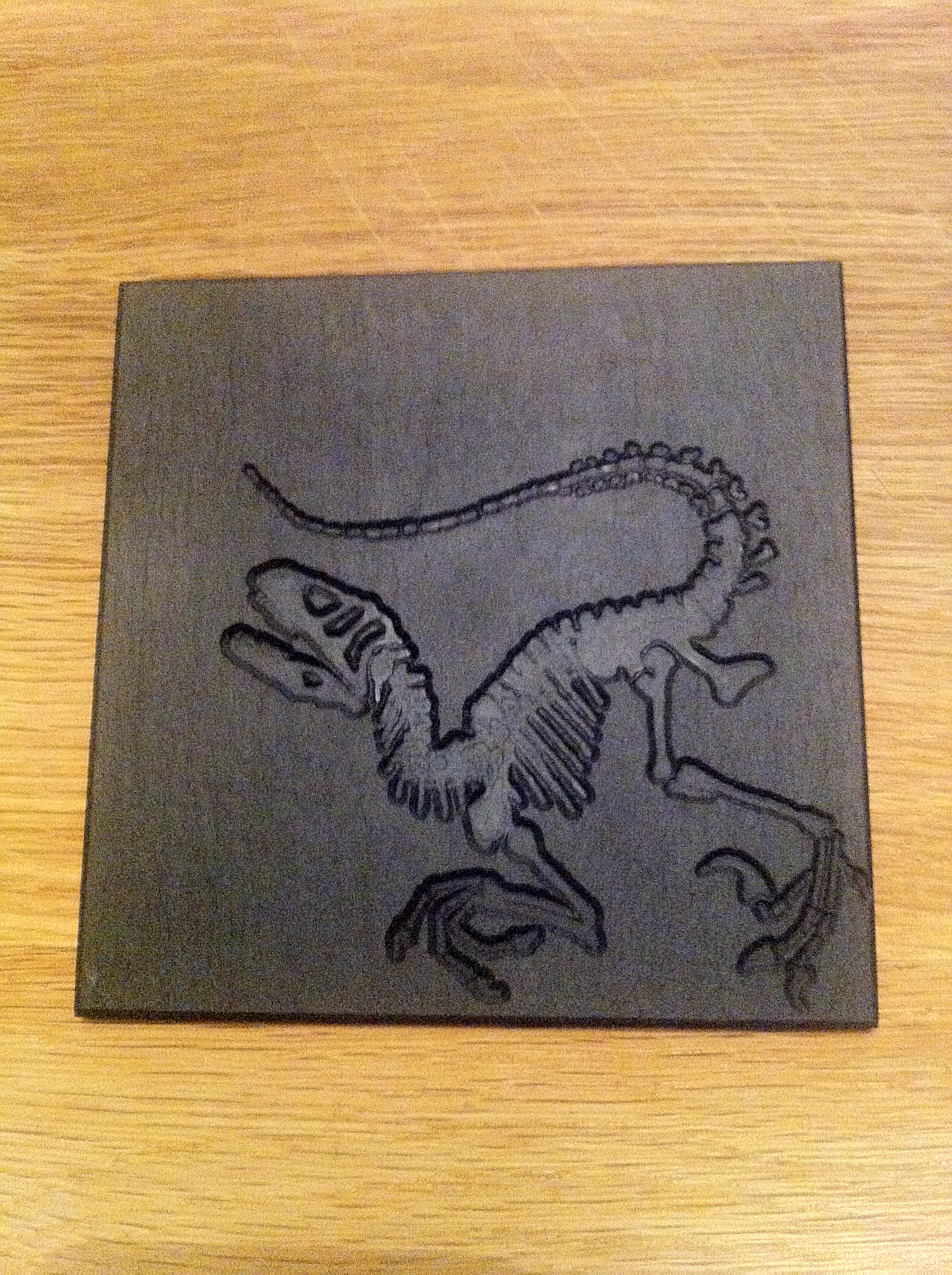 Raptor Fossil Coasters 100x100mm