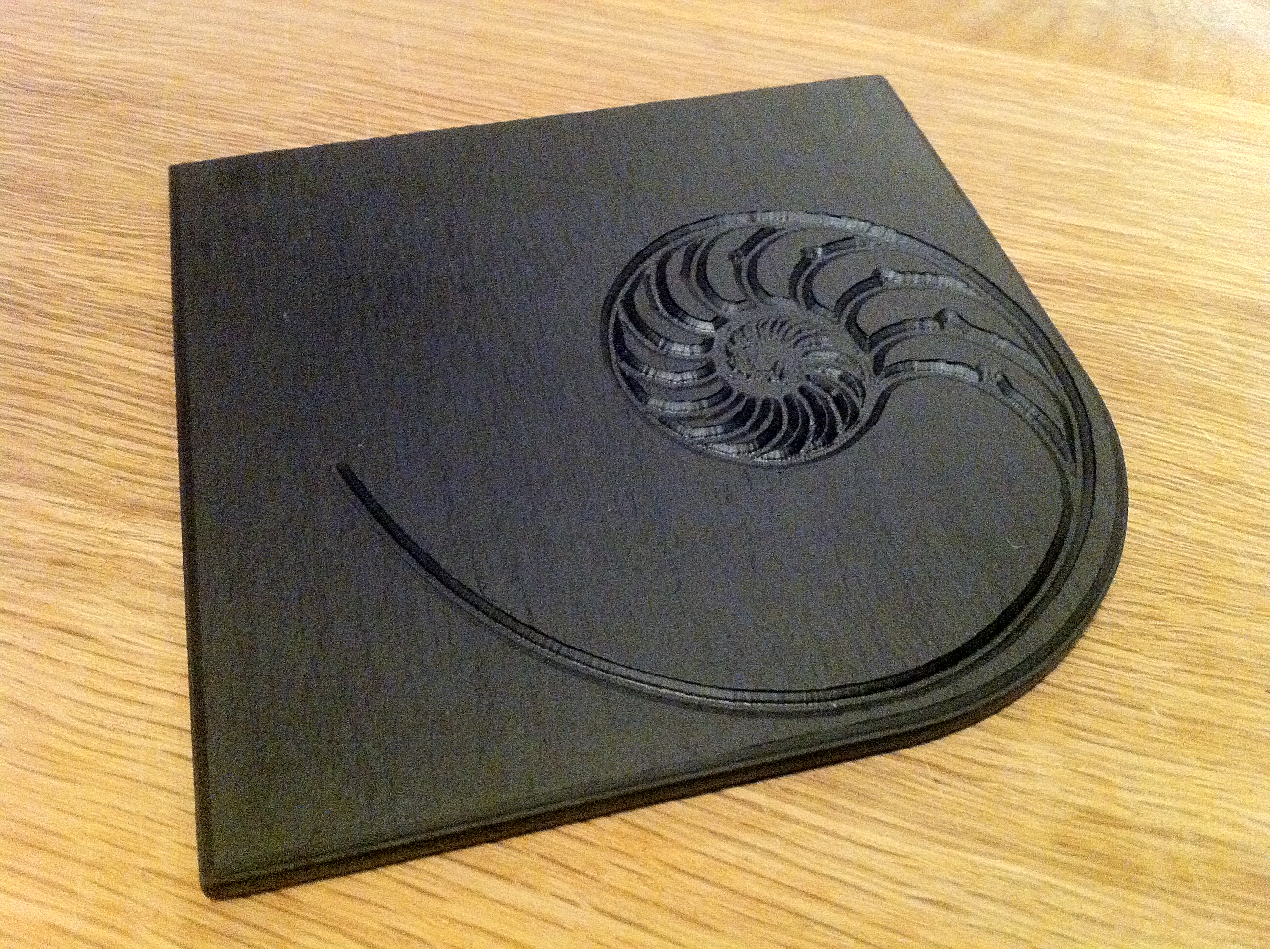 Nautilus Fossil Coasters 100x100mm