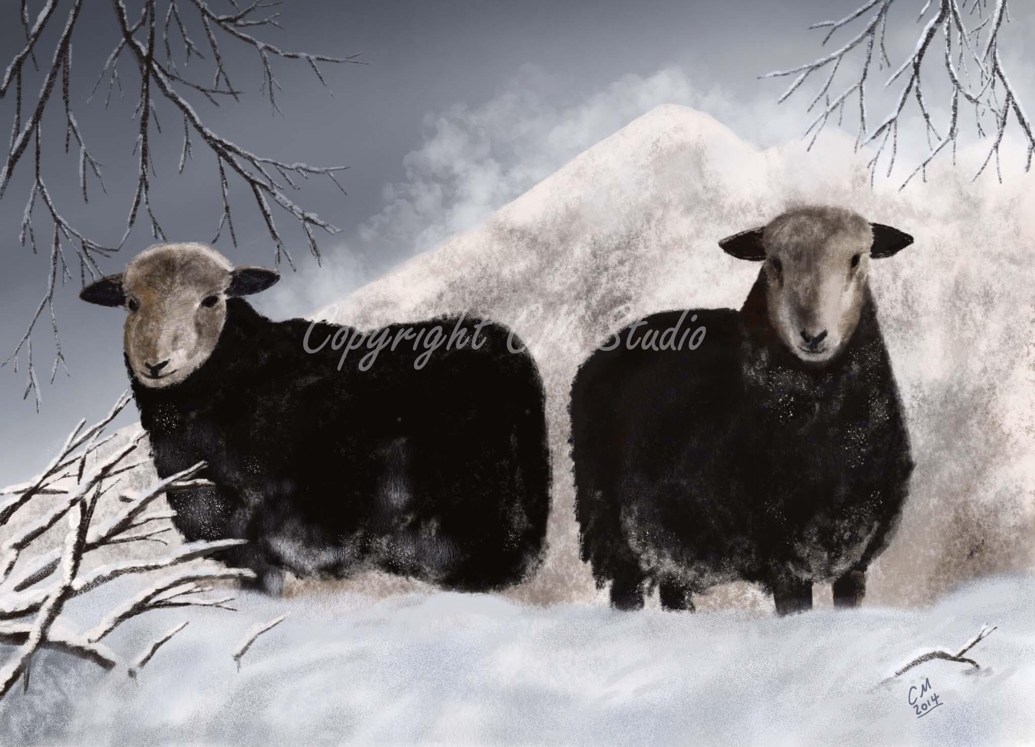 A4 Print Snow Sheep