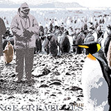 People amoung King Penguins