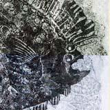Print of a flounder