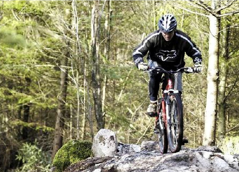 7 Stanes Mountain Biking Glentrool