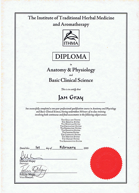 Anatomy and Physiology Diploma