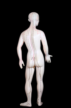 Meridian and Acupressure massage models