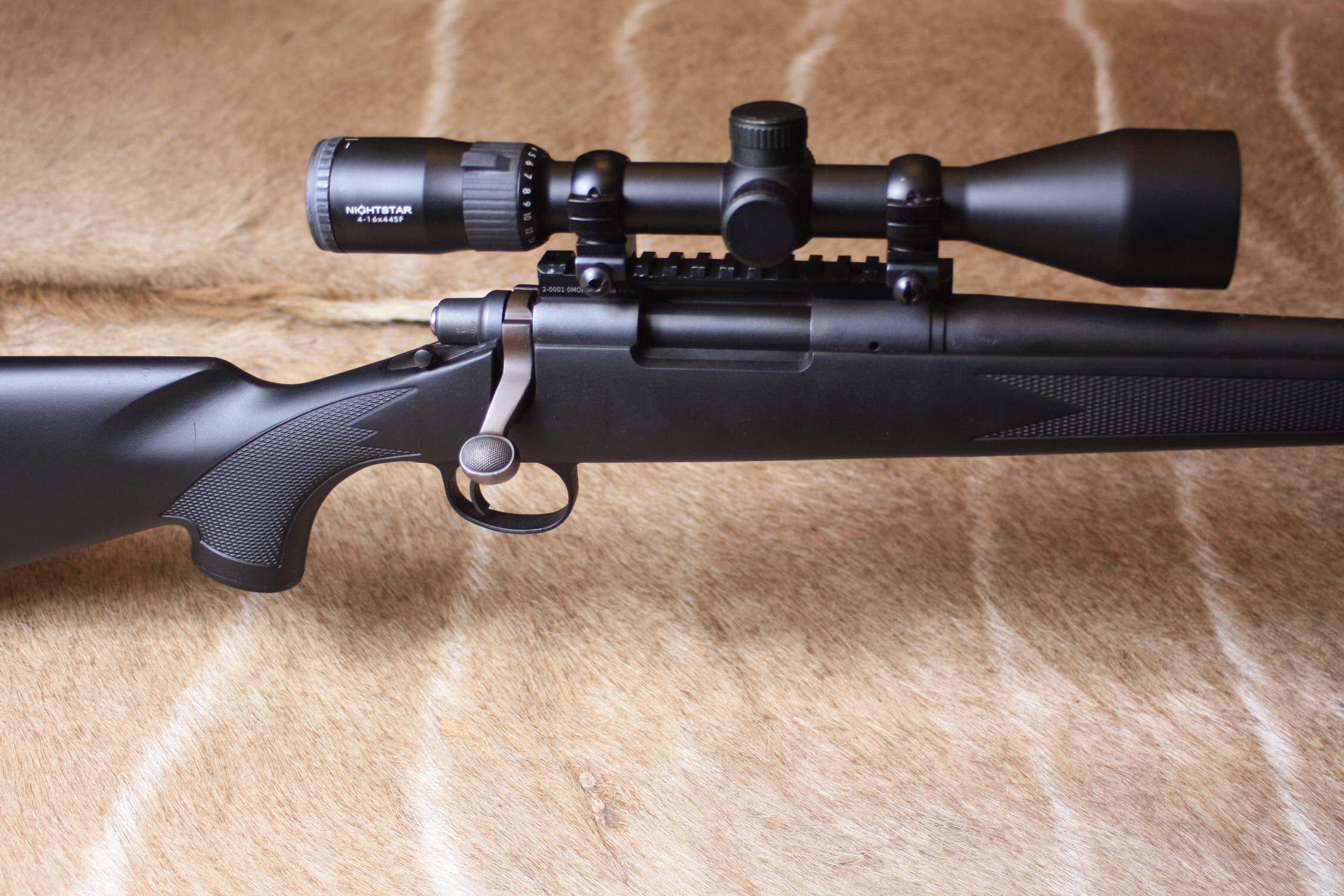 Remington 700 .223 Rifle Setup