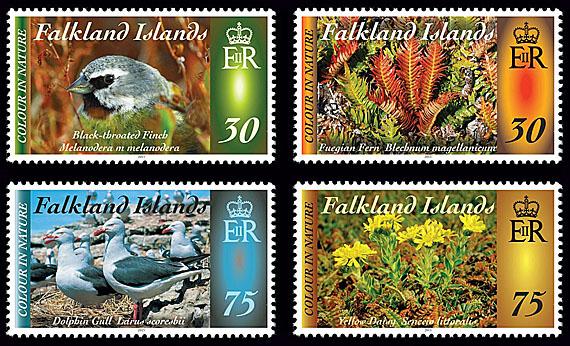 Falklands Colour  In Nature Part IV Setjpg