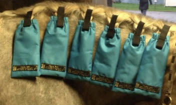 Ultimate Mane Bag Set of 6 - Turquoise