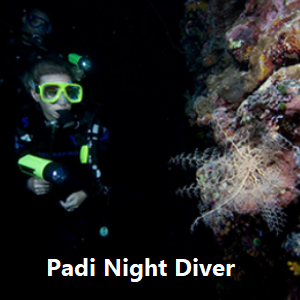 Padi Night Diver Speciality