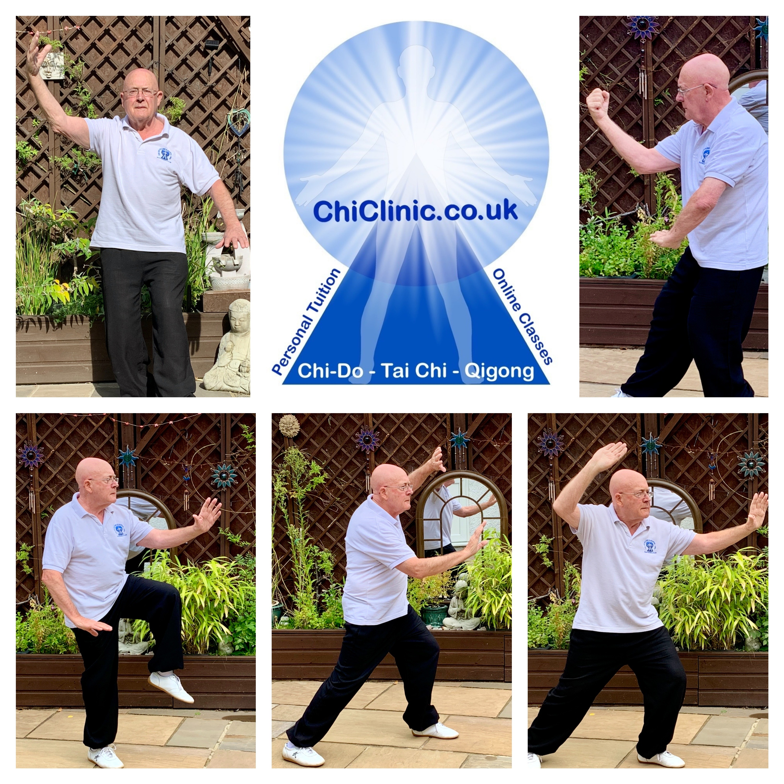 On line Tai Chi and QiGong Classes
