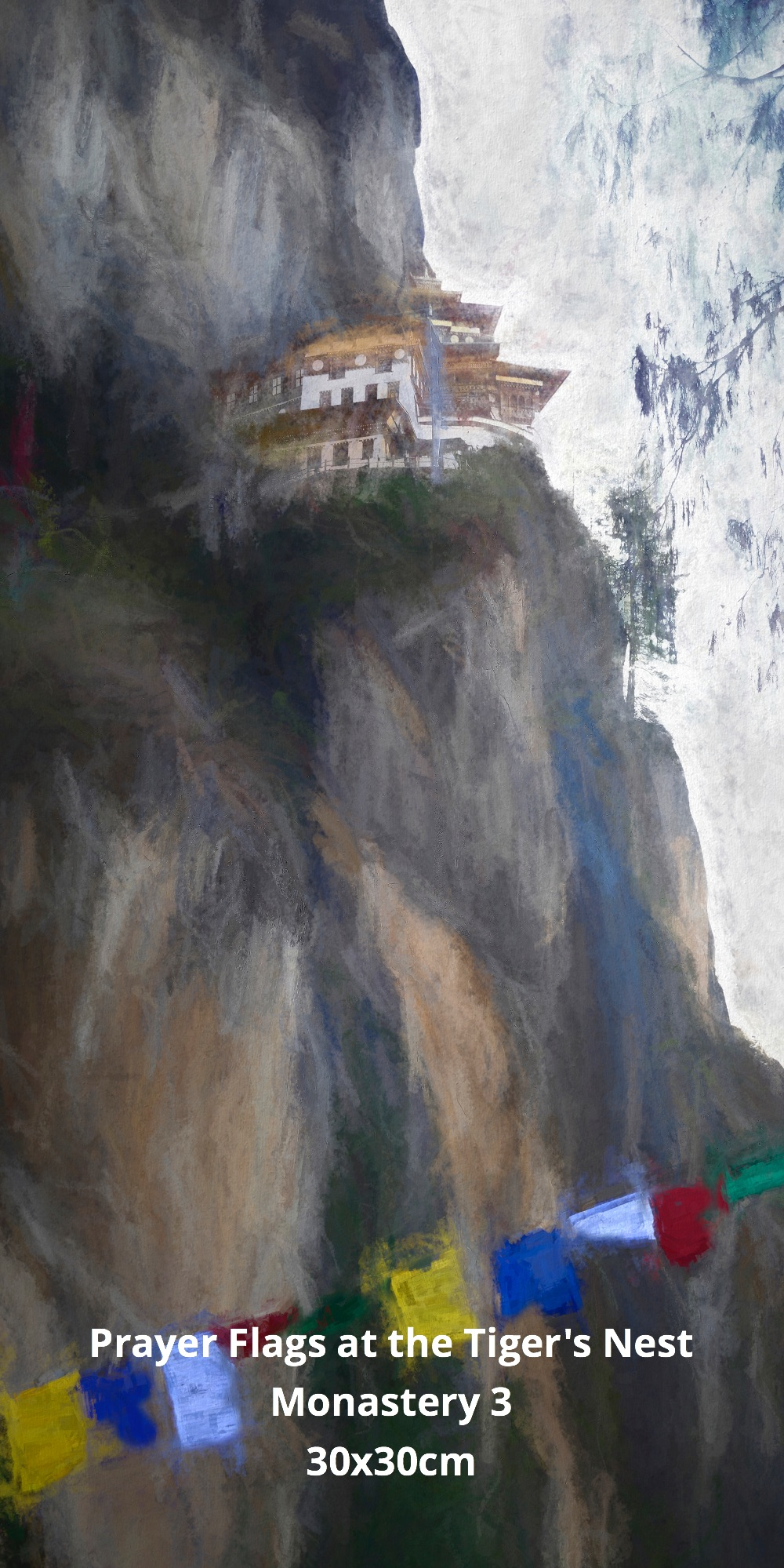 Prayer Flags at the Tiger's Nest Monastery 3
