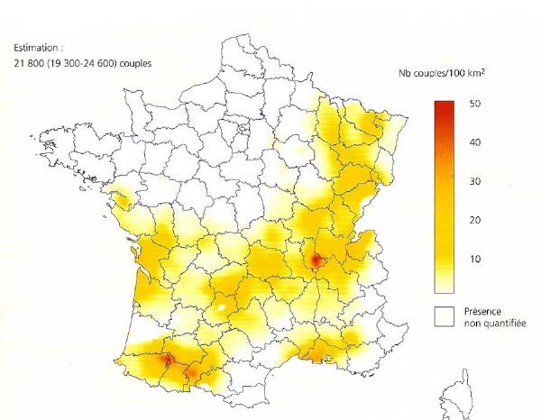 Black-kite-map-France