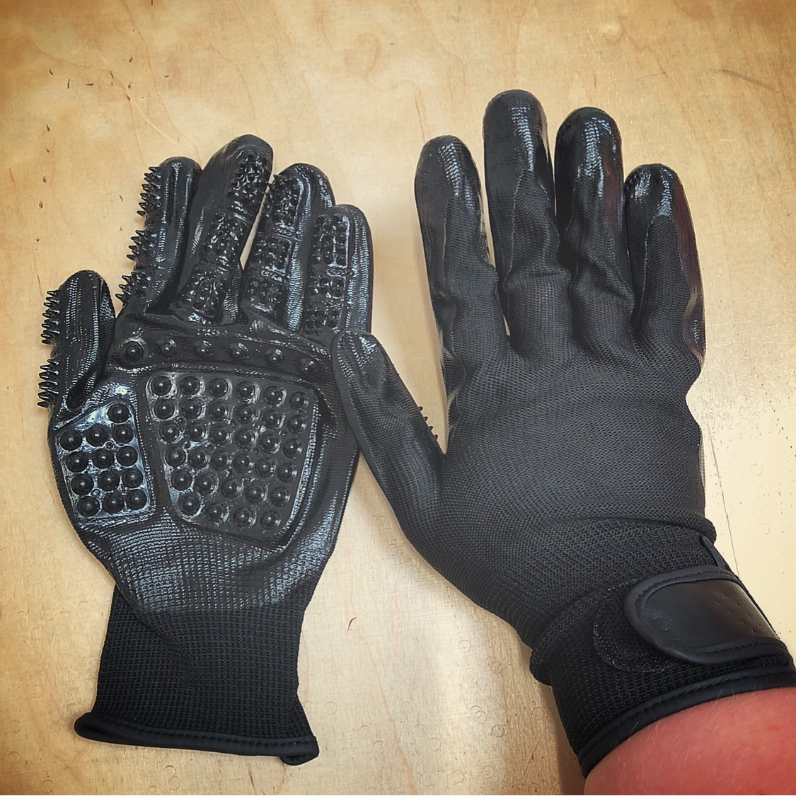 Trophy Tails Grooming Gloves