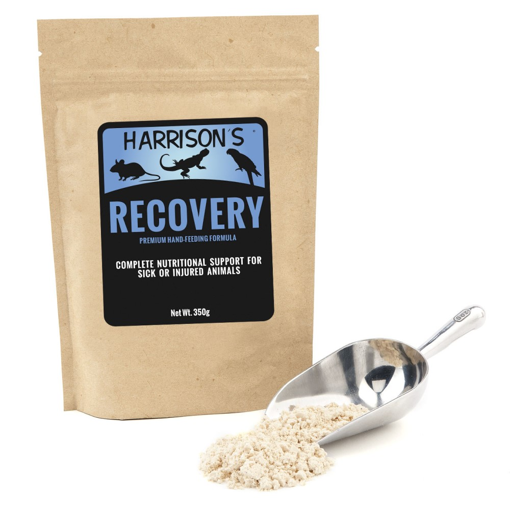Harrison's Bird Foods Recovery Formula