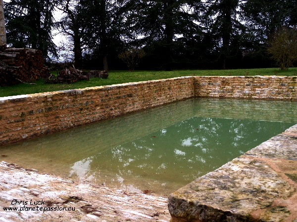 recently restored French farmyard pond with slope for animals.