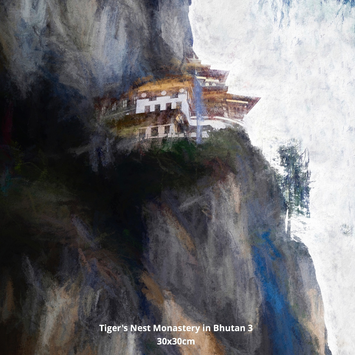 Tiger's Nest Monastery in Bhutan 3