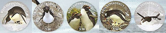 Ross Dependency Penguinsjpg