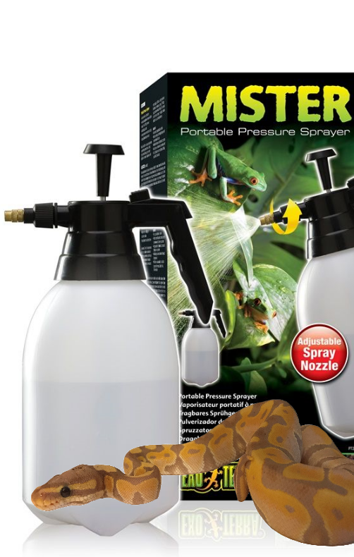 Royal Python and water misting bottle