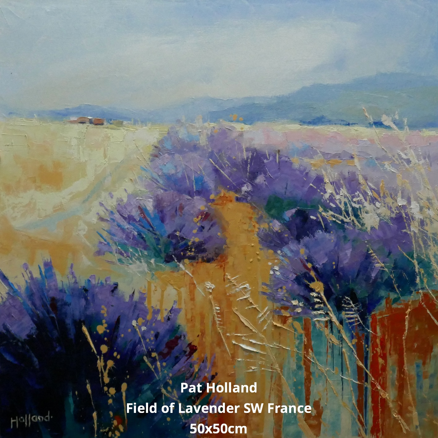 Field of Lavender SW France 50x50cm