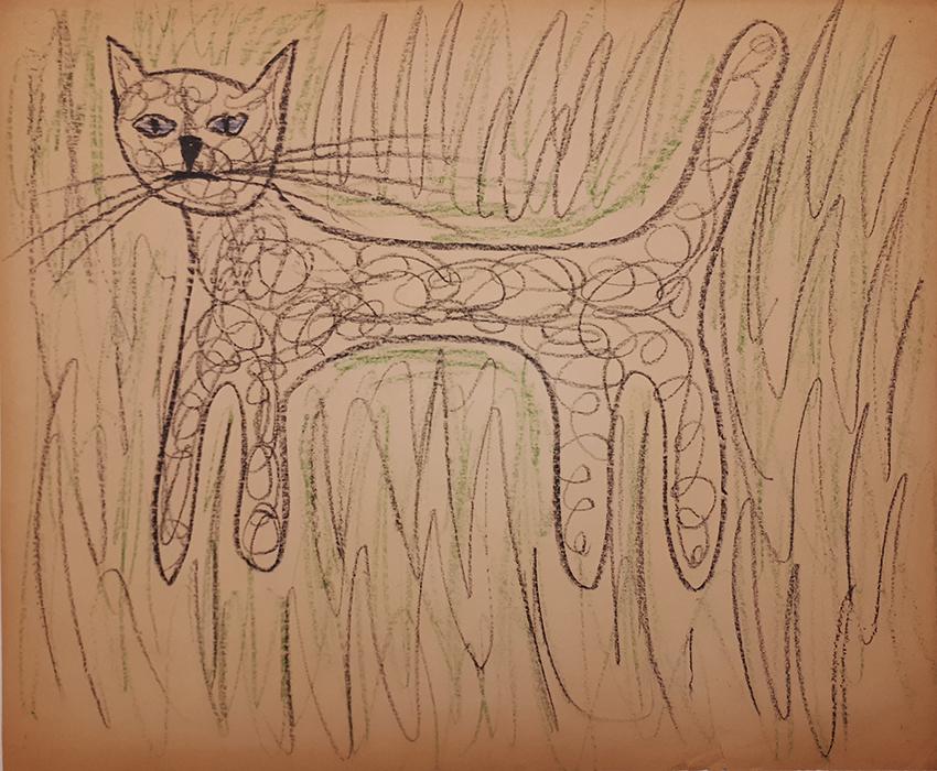203_04_nodate_Cat_webjpg
