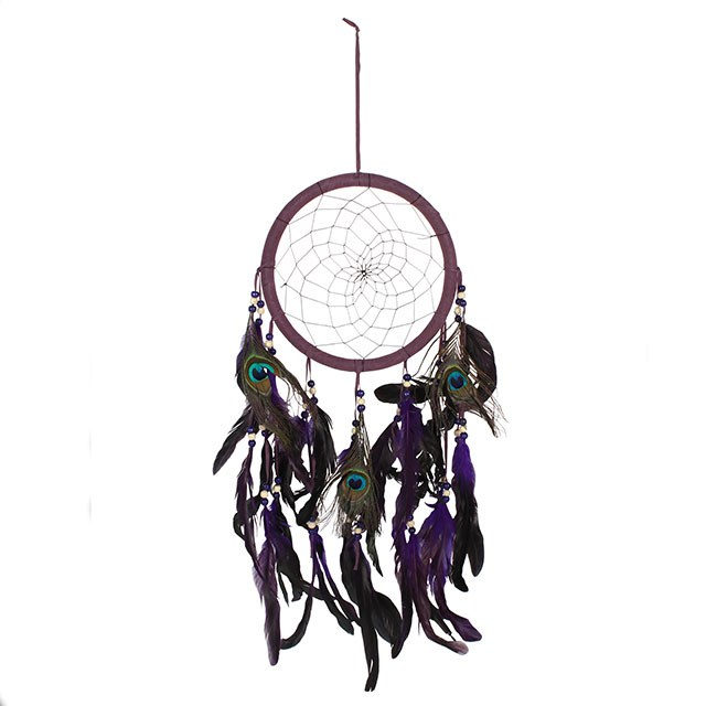 History of the DreamCatcher.