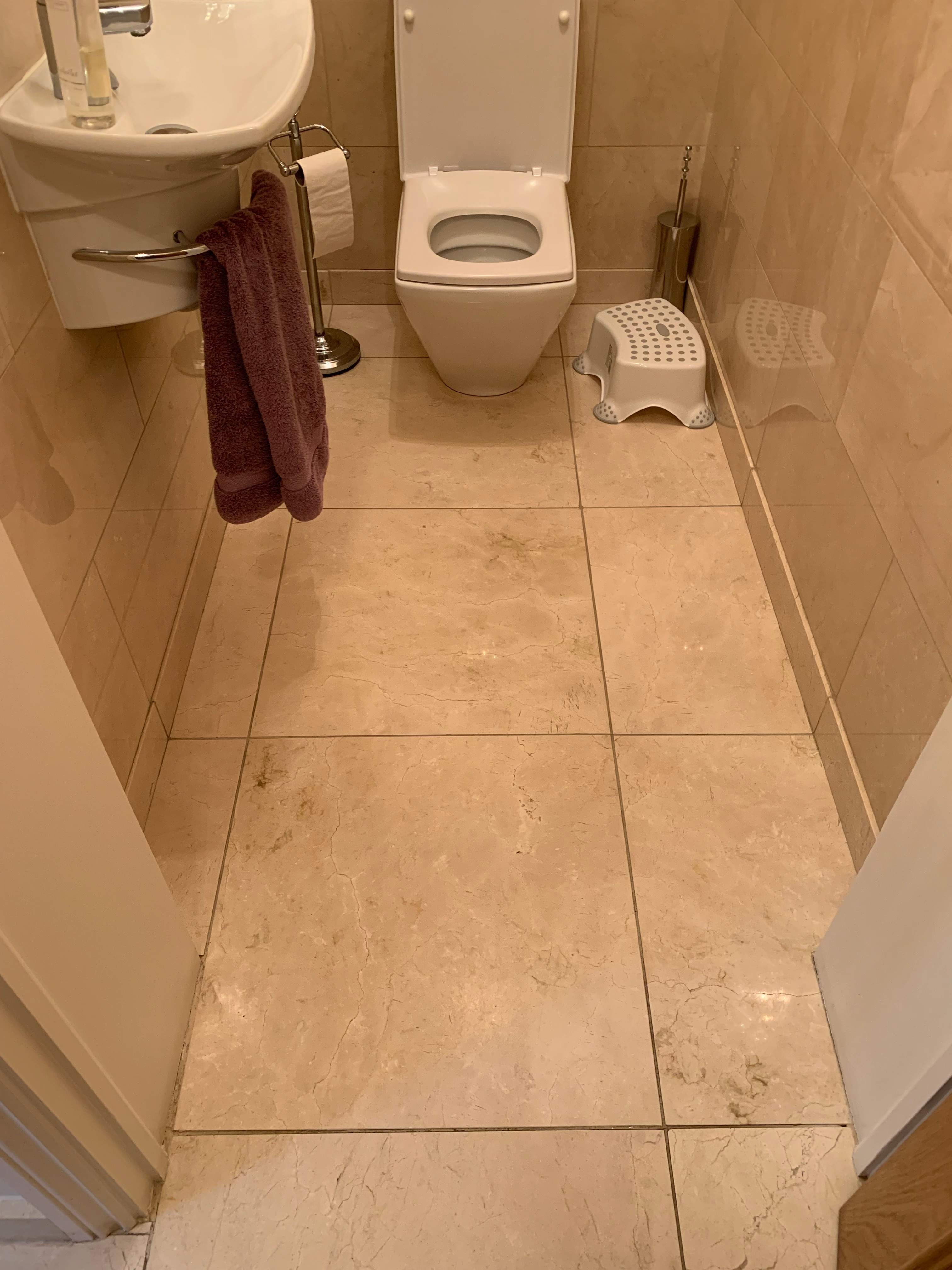 marble restoration toilet floor