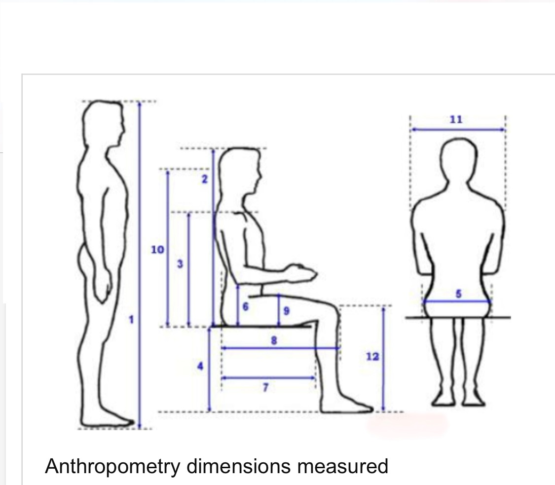 Anthropometric Data and Measurements