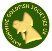 Nationwide: Goldfish Societies UK Aims and Objectives for 2019 - 2022
