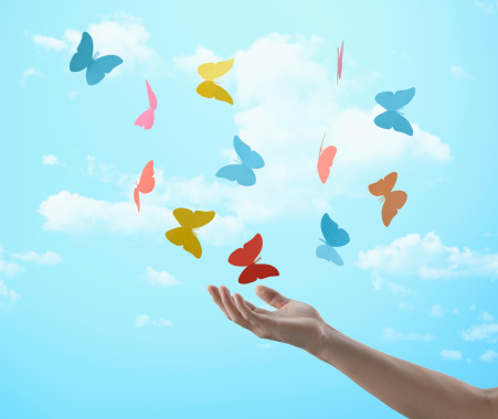 Guest blog 9- The Butterfly Effect
