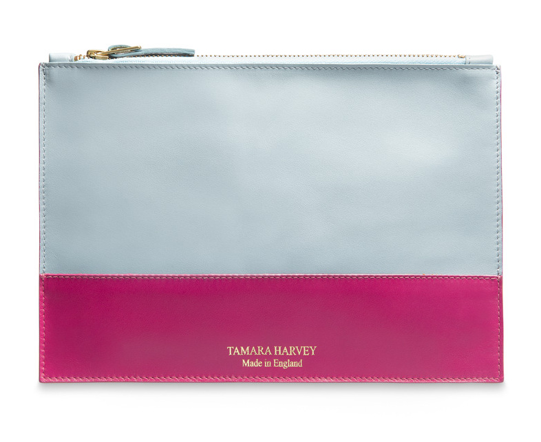 Duck Egg Blue and Hot Pink Leather Zip Pouch