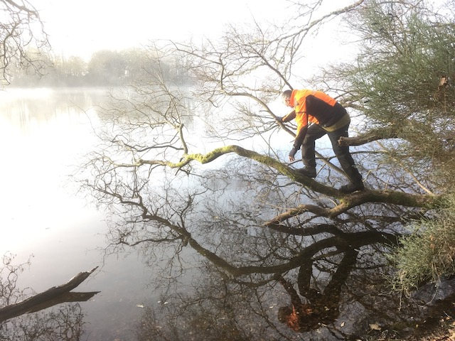 Julian Schad balancing on a tree overhanging Lake of Menteith