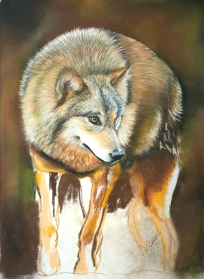 Wolf progjpg