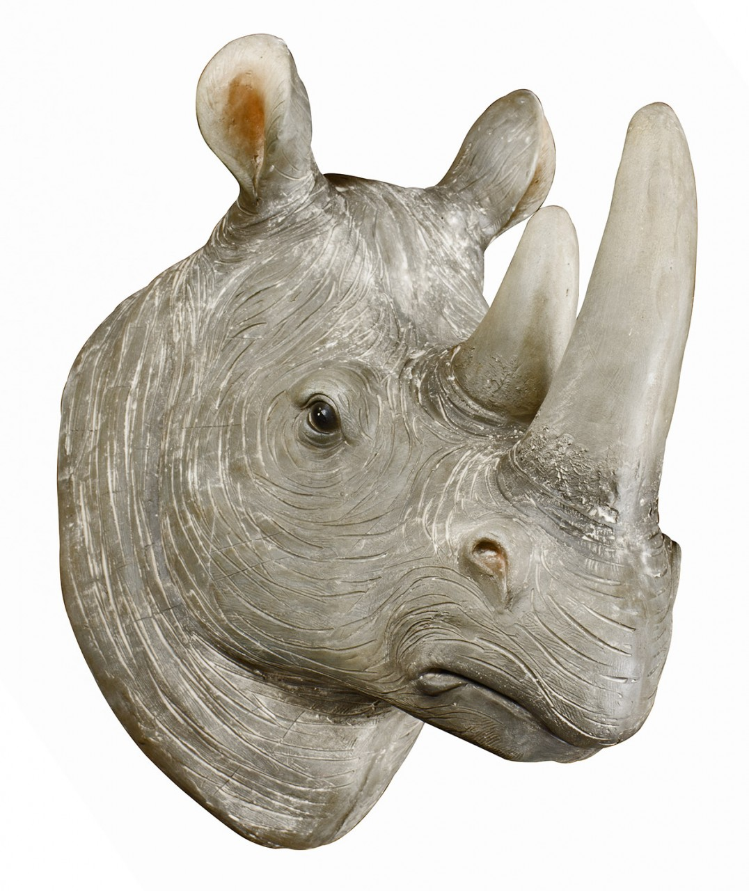 Rocky Rhino Head wall art