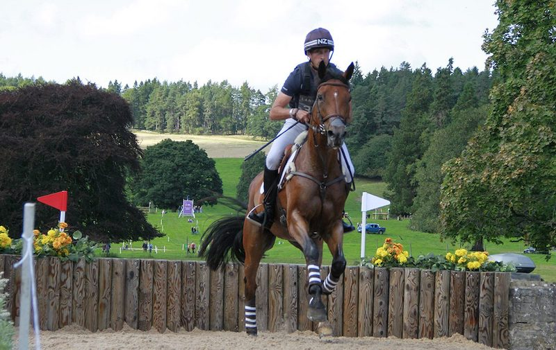 Horse and rider jumping at Blair Castle Land Rover horse trials