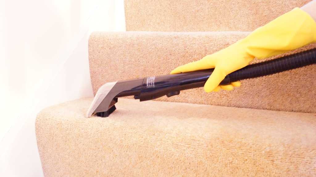 Carpet Cleaning Steps (1 step)