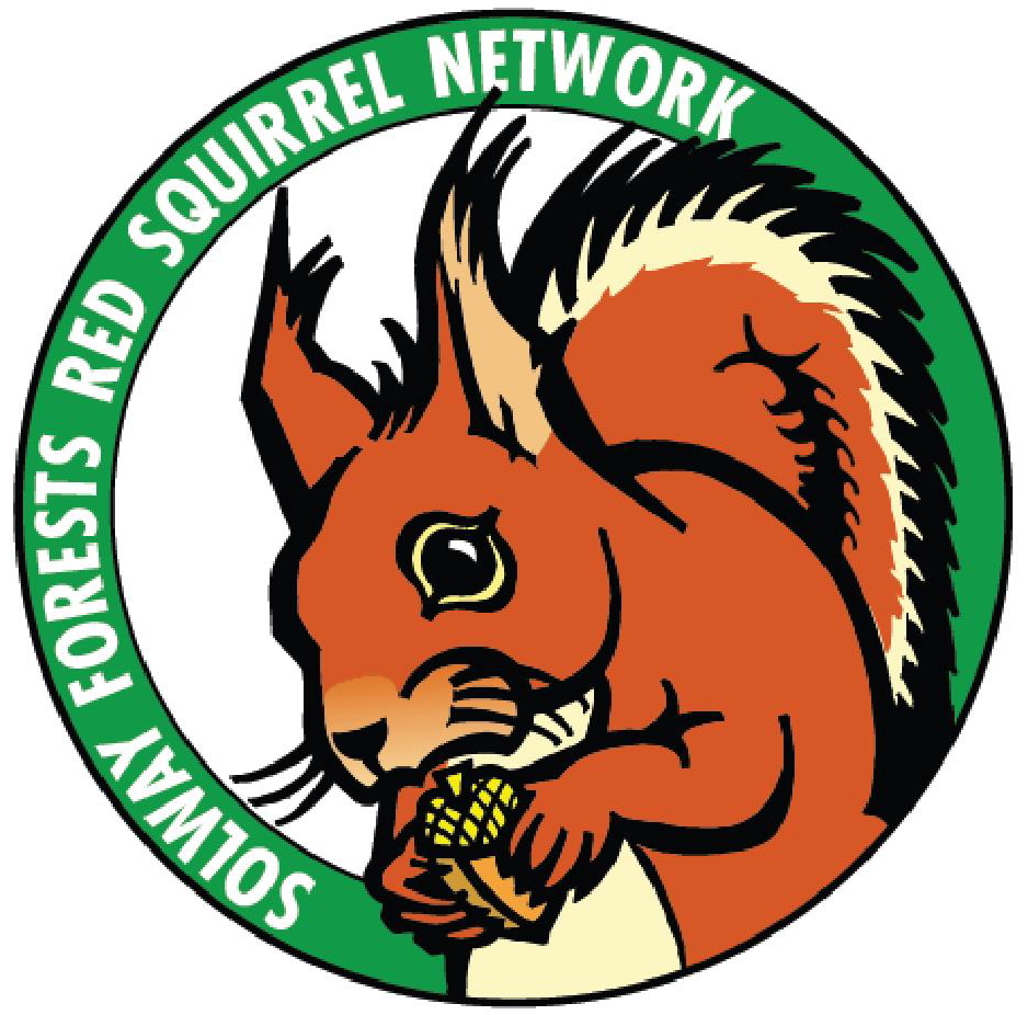 Squirrel logojpg