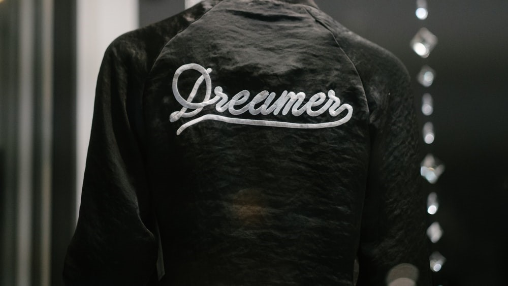 From Dreamer to Visionary