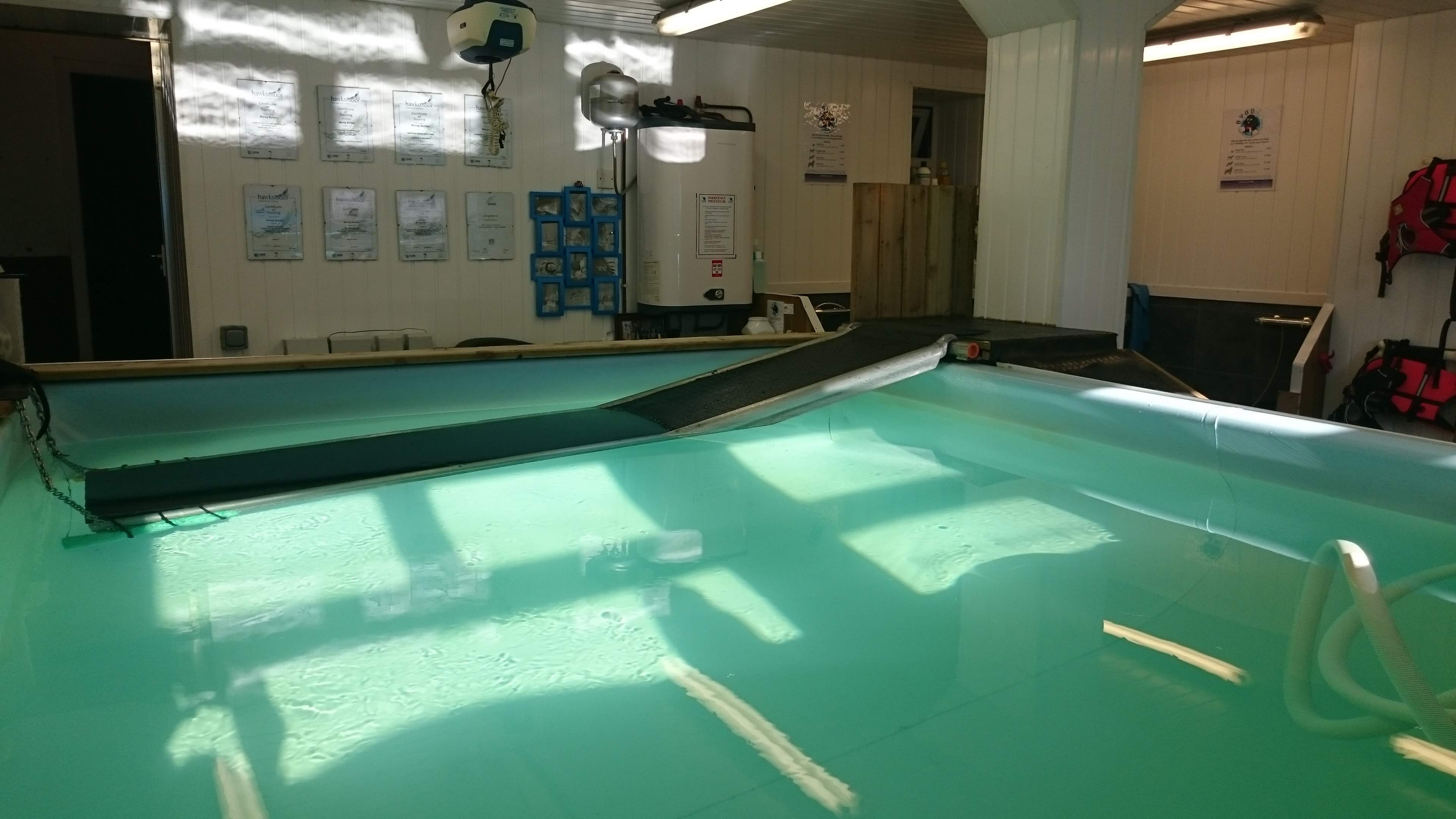 Facilities at the Solway Canine Hydrotherapy Centre Dumfries south west Scotland