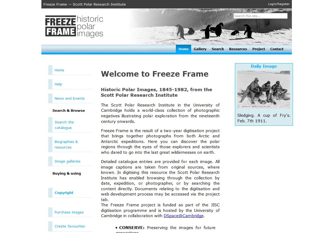 Freeze Framejpg