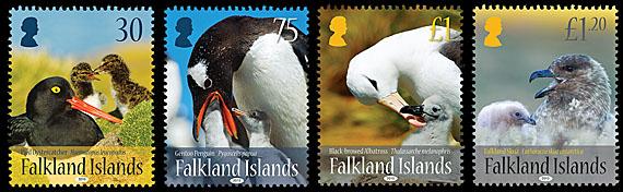 Falkland Islands Birds and Young Set 2015jpg