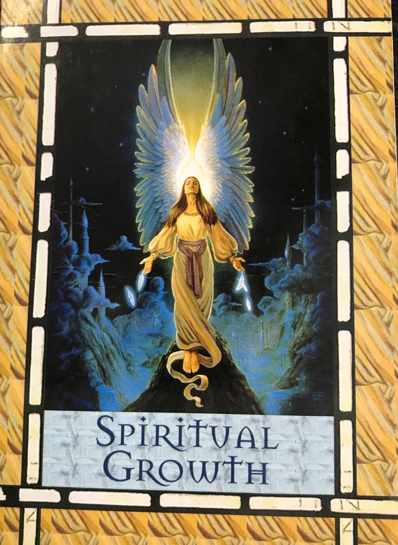 Weekly Reading 25th - 31st January 2021