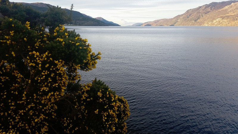 Lorien House bed and breakfast is close to Loch Ness